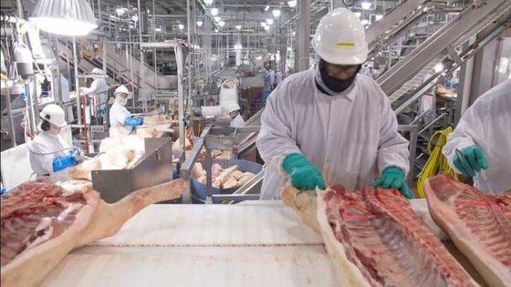 Работники  мясокомбинатов  массово  заболевают  коронавирусом