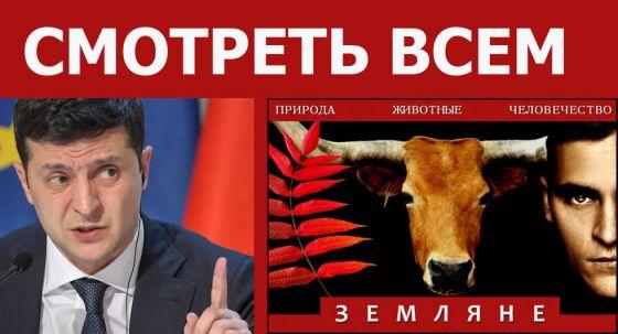 Владимир Зеленский рекомендовал к просмотру фильм «Земляне»